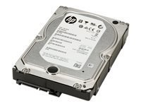 HP Enterprise - disque dur - 6 To - SATA