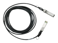 Cisco SFP+ Copper Twinax Cable - câble à attache directe - 10 m