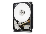 WD Ultrastar DC HC510 HUH721010ALE604 - disque...